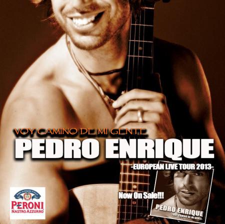 Imagen de Pedro Enrique en concierto gira 2013